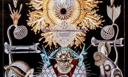 VYFOŤ SDÍLEJ VYSTAV – Výstava v ulicích Valašského Meziříčí